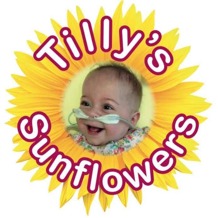 Blog Post 4 – Tilly's Sunflowers 2021 launch